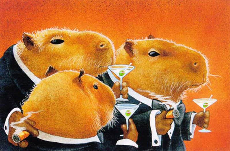 classy capybaras The Friday Shirk Report   Volume 133
