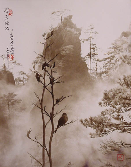 photographs that look like traditional chinese paintins dong hong oai asian pictorialism 3 Photos Made to Look Like Traditional Chinese Paintings