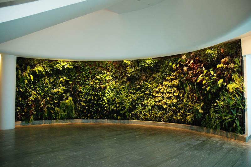 qantas lounge sydney 2 15 Incredible Vertical Gardens Around the World