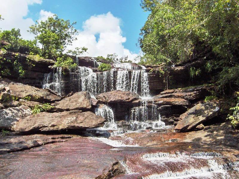 rio cano cristales river of five colours columbia 4 The River of Five Colors: Cano Cristales, Colombia