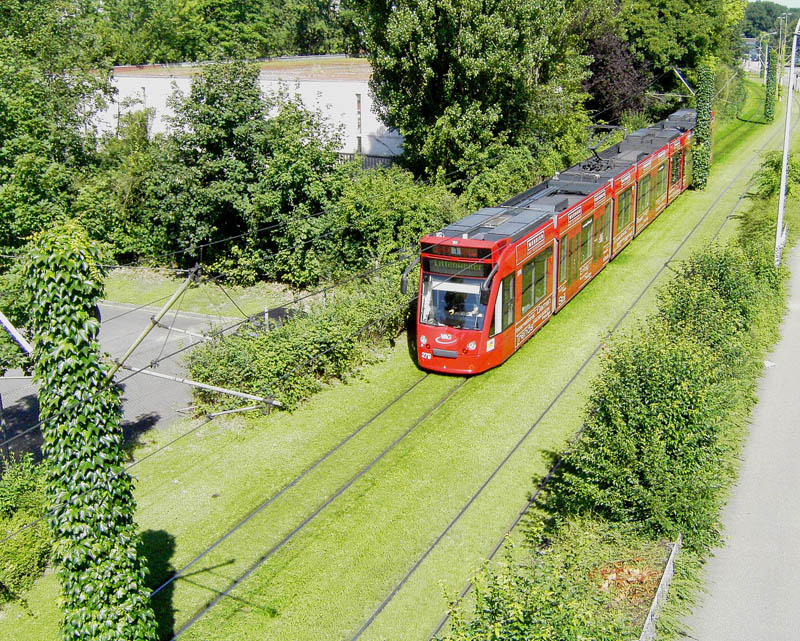 grassed tram tracks in freiburg germany Picture of the Day: Grassed Tramways of Freiburg, Germany