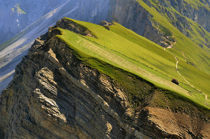 mountain farming in italy steep incline 2 Picture of the Day: Mountain Farming in Italy