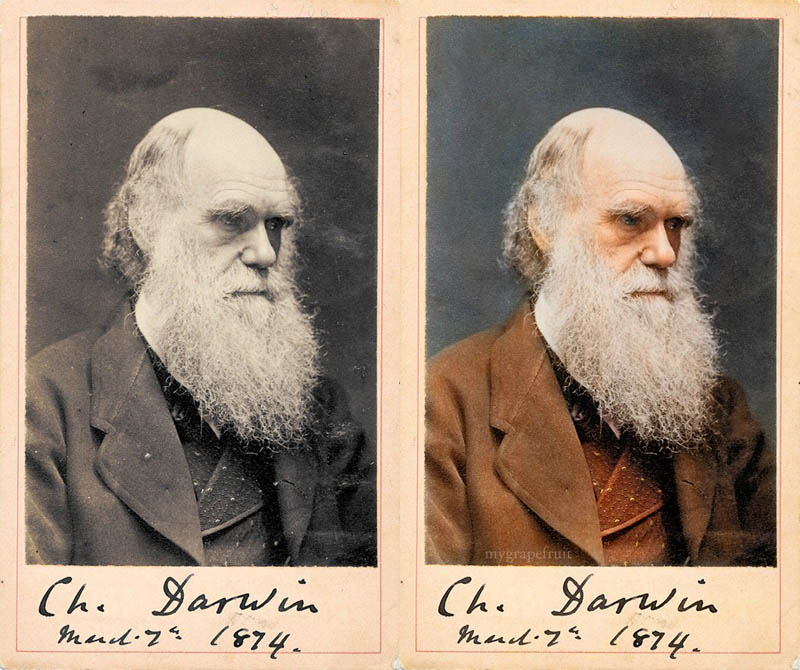 charles darwin colorized 15 Famous Photos in History Colorized
