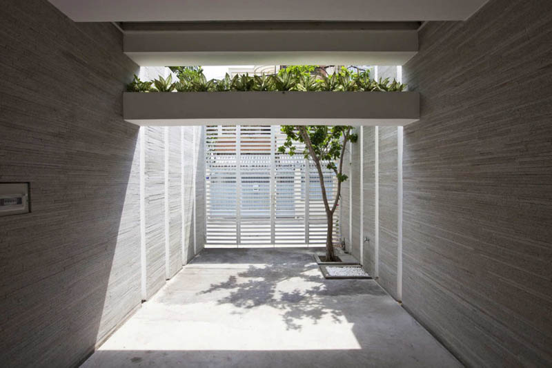 green house with planters for walls ho chi minh trang chu 17 Green Home in Ho Chi Minh has Living Walls