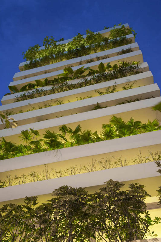 green house with planters for walls ho chi minh trang chu 18 Green Home in Ho Chi Minh has Living Walls