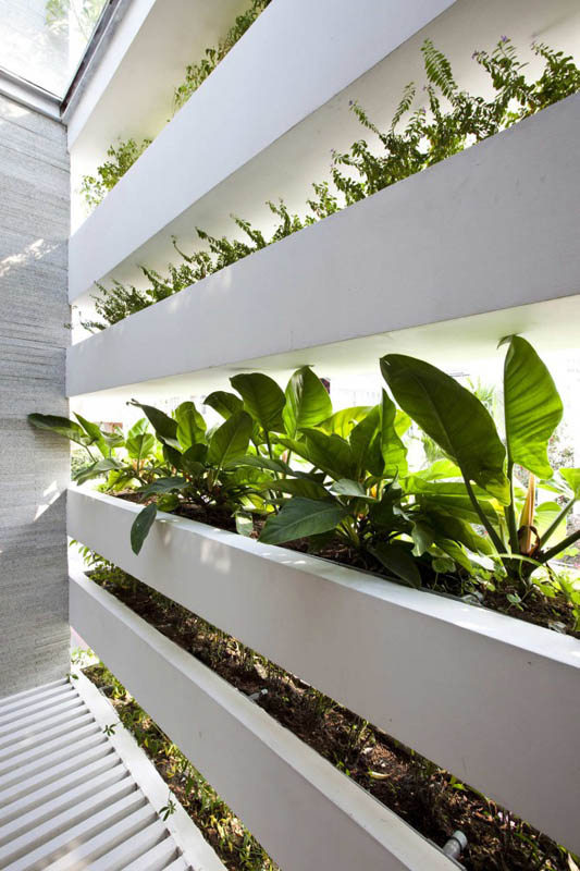 green house with planters for walls ho chi minh trang chu 5 Green Home in Ho Chi Minh has Living Walls