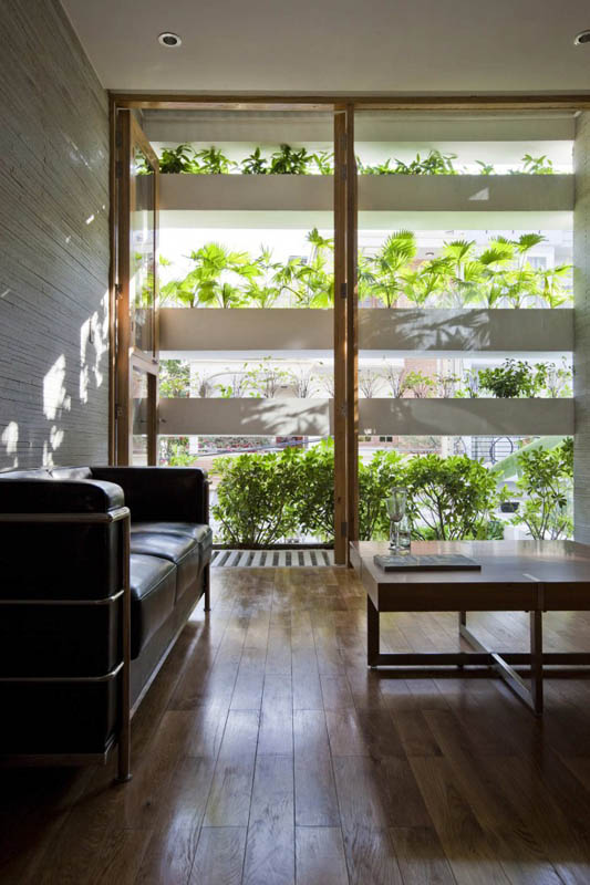 green house with planters for walls ho chi minh trang chu 7 Green Home in Ho Chi Minh has Living Walls