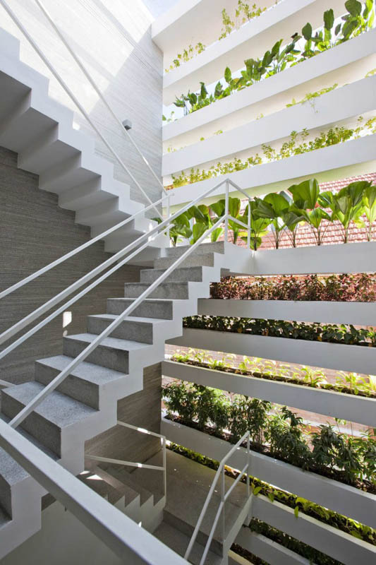 green house with planters for walls ho chi minh trang chu 9 Green Home in Ho Chi Minh has Living Walls