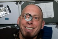 Picture of the Day: Water Bubble Reflection in Zero Gravity