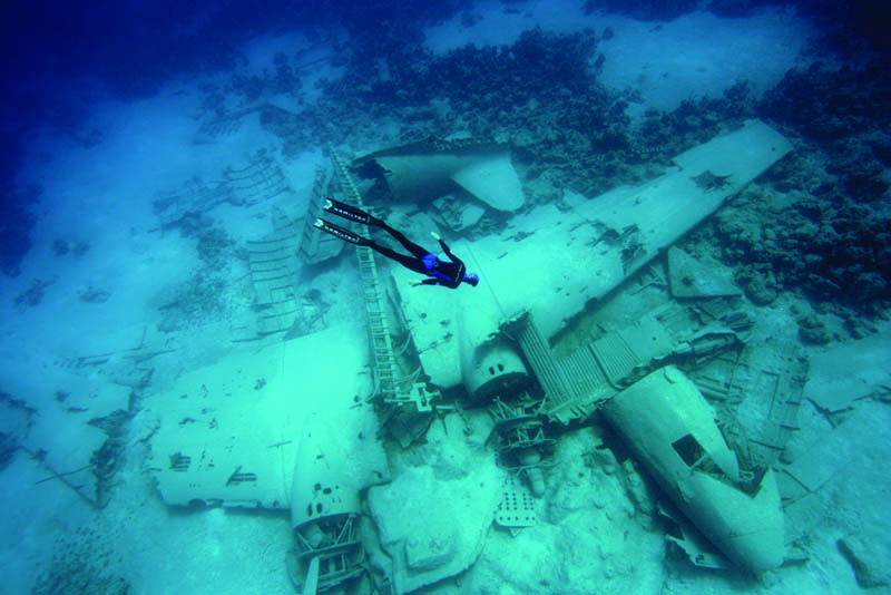 freediving an airplane wreck Picture of the Day: Freediving an Airplane Wreck