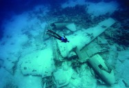 Picture of the Day: Freediving an Airplane Wreck
