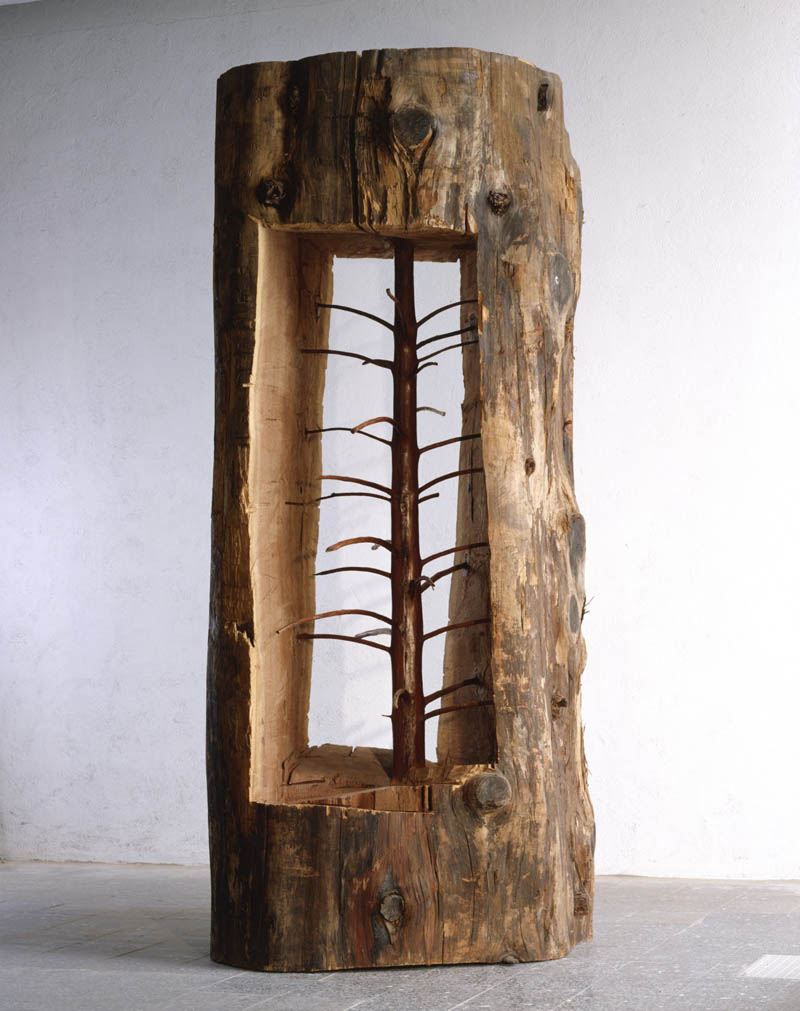giuseppe penone sapling carved inside a tree trunk hidden life within Picture of the Day: The Hidden Life Within