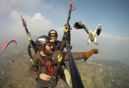 The Ultimate Guide to Parahawking in Nepal