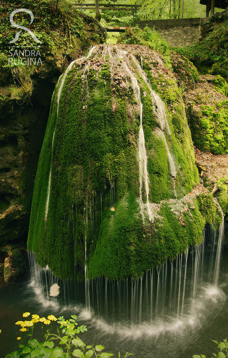 bigar waterfall carass severin romania Picture of the Day: Dramatic Moss Covered Waterfall in Romania