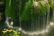 Picture of the Day: Dramatic Moss Covered Waterfall in Romania