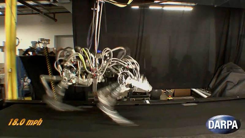 darpa cheetah sets speed record for legged robots 1 DARPA Cheetah Sets Land Speed Record for Legged Robots at 18mph (29km/h)