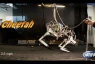 DARPA Cheetah Sets Land Speed Record for Legged Robots at 18mph (29km/h)