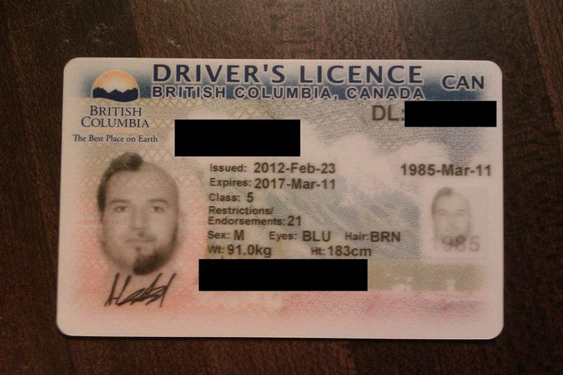 half shaved beard head drivers license two face 9 This Guy Went All Out for the Ultimate Drivers License Photo