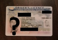 This Guy Went All Out for the Ultimate Driver's License Photo