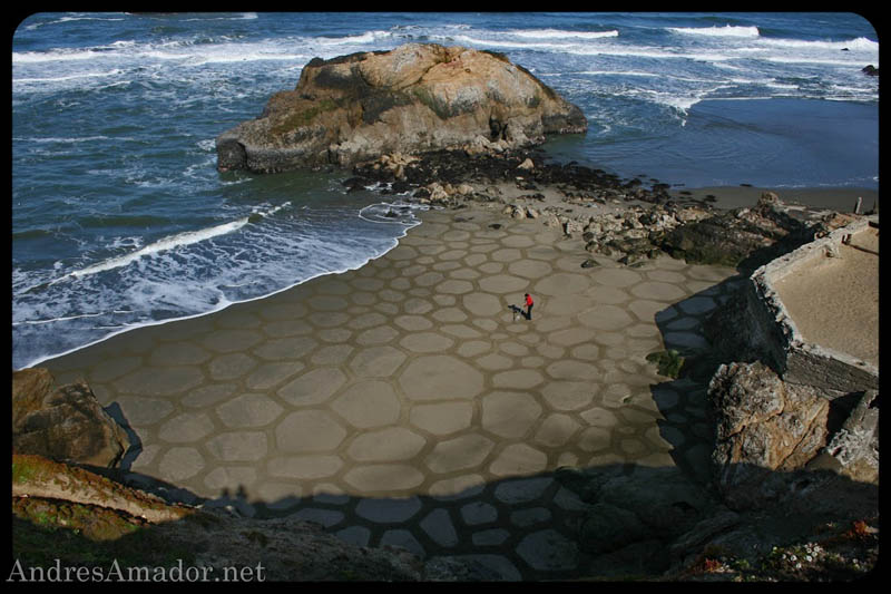 sand beach art andres amador 1 The Incredible Beach Art of Andres Amador