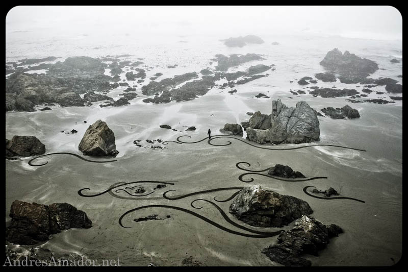 sand beach art andres amador 16 The Incredible Beach Art of Andres Amador