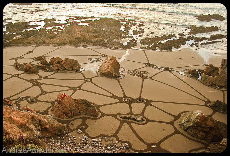 sand beach art andres amador 20 The Incredible Beach Art of Andres Amador