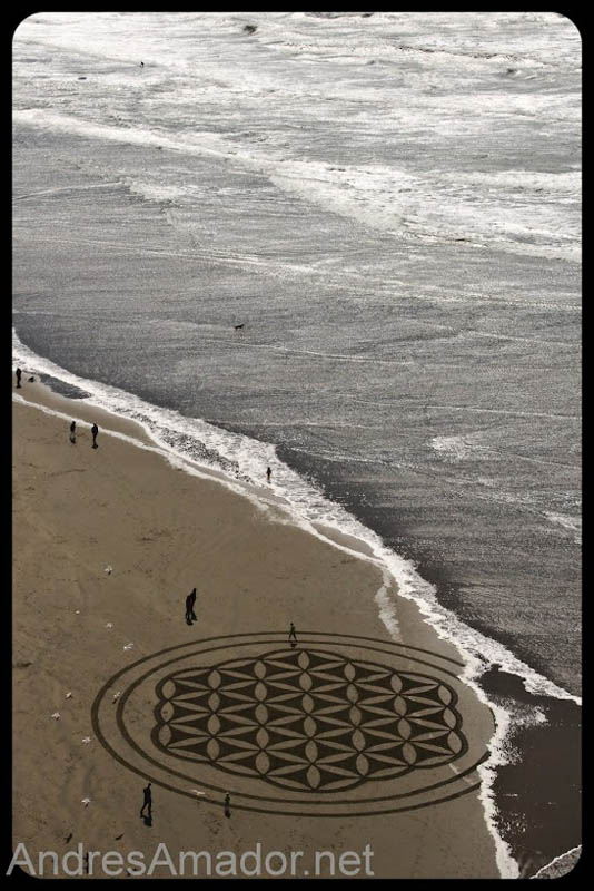 sand beach art andres amador 21 The Incredible Beach Art of Andres Amador