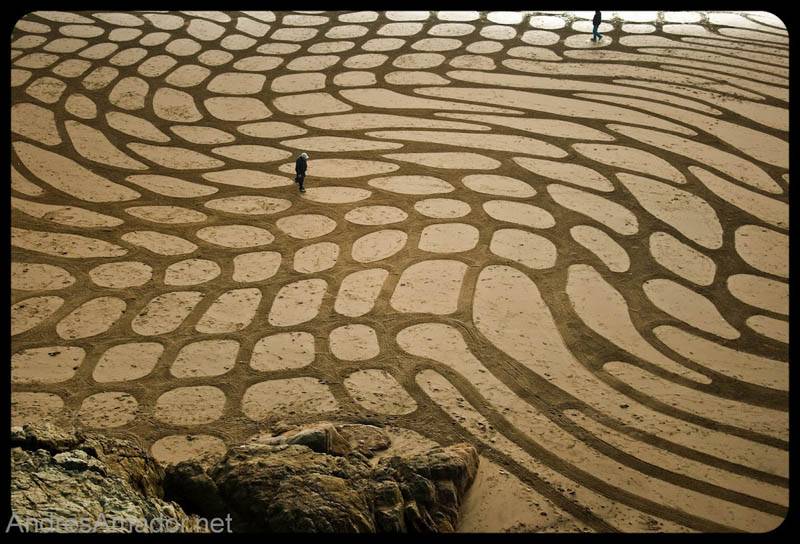 sand beach art andres amador 9 The Incredible Beach Art of Andres Amador