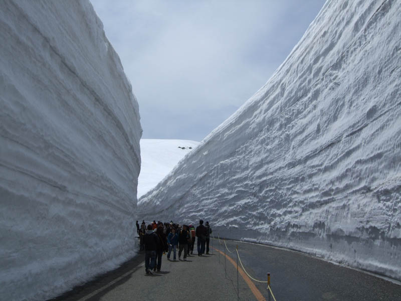 tateyama kurobe alpine route snow corridor 20 meters 65 ft walls 6 The 65 Foot (20m) Snow Corridor in Japan