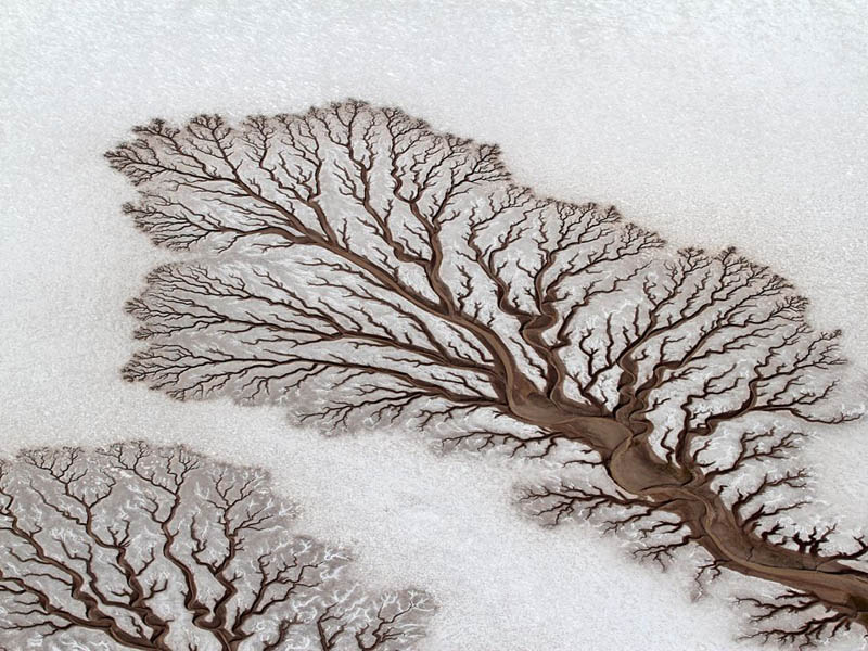 baja california desert dried out rivers salt flats mexico lichtenstein The Top 100 Pictures of the Day for 2012