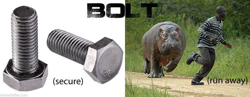 bolt contronym Visualizing Contronyms Using Pictures