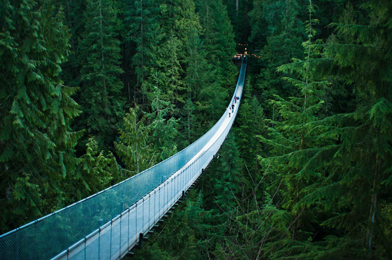 capilano suspension bridge in vancouver The Top 100 Pictures of the Day for 2012