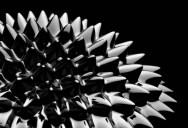 The Hypnotic Magnetism of Ferrofluids