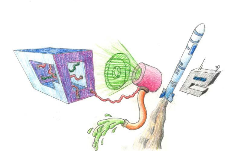 google doodle winners 2012 grade 6 7 2 The Top 50 Google Doodle Contest Winners Gallery