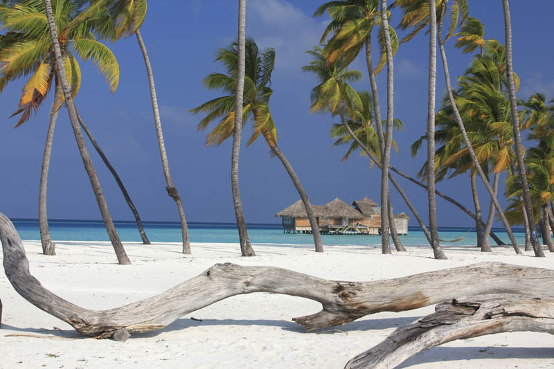 soneva gili maldives resort six senses 7 The Amazing Stilt Houses of Soneva Gili in the Maldives