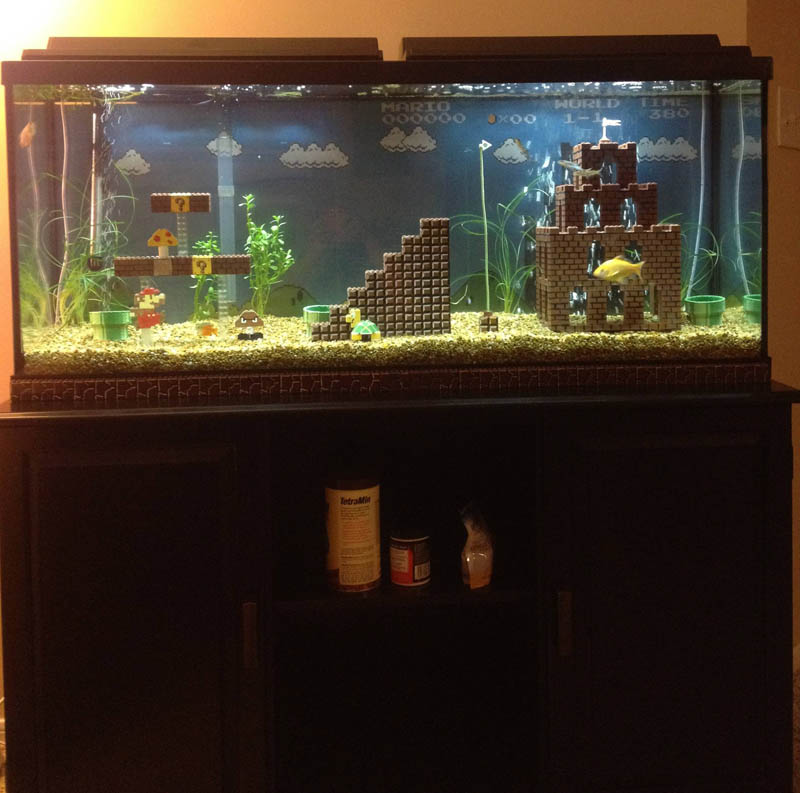 super mario fish tank aquarium 7 This Super Mario Fish Tank is Awesome