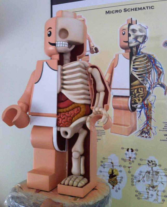 anatomy of a lego man jason freeny 10 The Anatomy of a LEGO Man