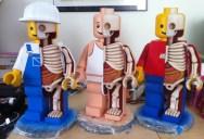 The Anatomy of a LEGO Man