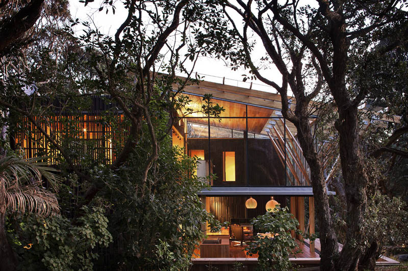 beach house surrounded by trees under pohutukawa herbst architects 10 Award Winning Beach House Surrounded by Trees