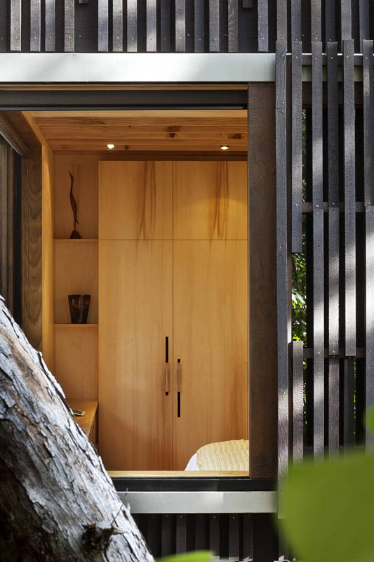 beach house surrounded by trees under pohutukawa herbst architects 4 Award Winning Beach House Surrounded by Trees