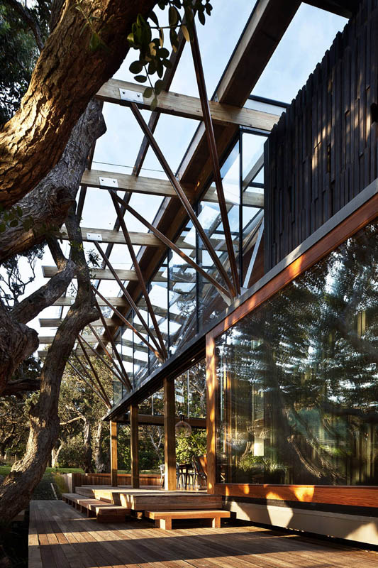 beach house surrounded by trees under pohutukawa herbst architects 5 Award Winning Beach House Surrounded by Trees