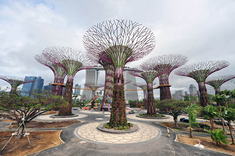 gardens by the bay supertrees singapore 1 25 Cell Phone Towers Disguised to Look Like Something Else