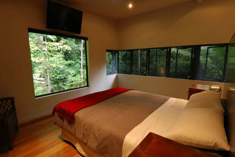 rainforest tree house mmp architects cairns australia 9 The Rainforest Tree House in Cairns, Australia