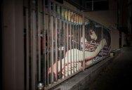 Amazing Street Art on Railings by Zebrating