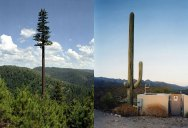 25 Cell Phone Towers Disguised to Look Like Something Else