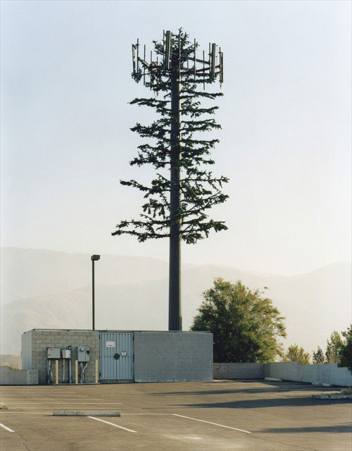 cell phone tower disguised as a tree 10 25 Cell Phone Towers Disguised to Look Like Something Else