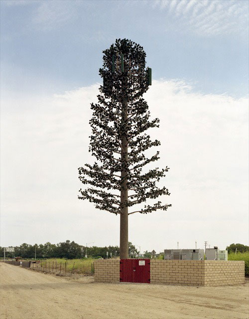 cell phone tower disguised as a tree 8 25 Cell Phone Towers Disguised to Look Like Something Else