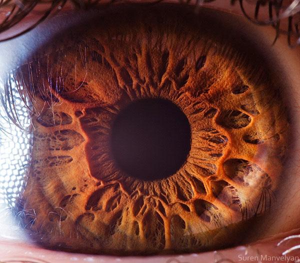 extreme close up of human eye macro suren manvelyan 13 21 Extreme Close Ups of the Human Eye