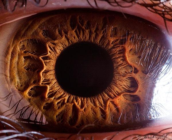 extreme close up of human eye macro suren manvelyan 14 21 Extreme Close Ups of the Human Eye