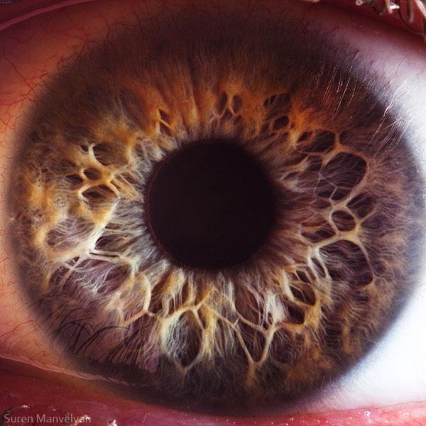 extreme close up of human eye macro suren manvelyan 16 21 Extreme Close Ups of the Human Eye